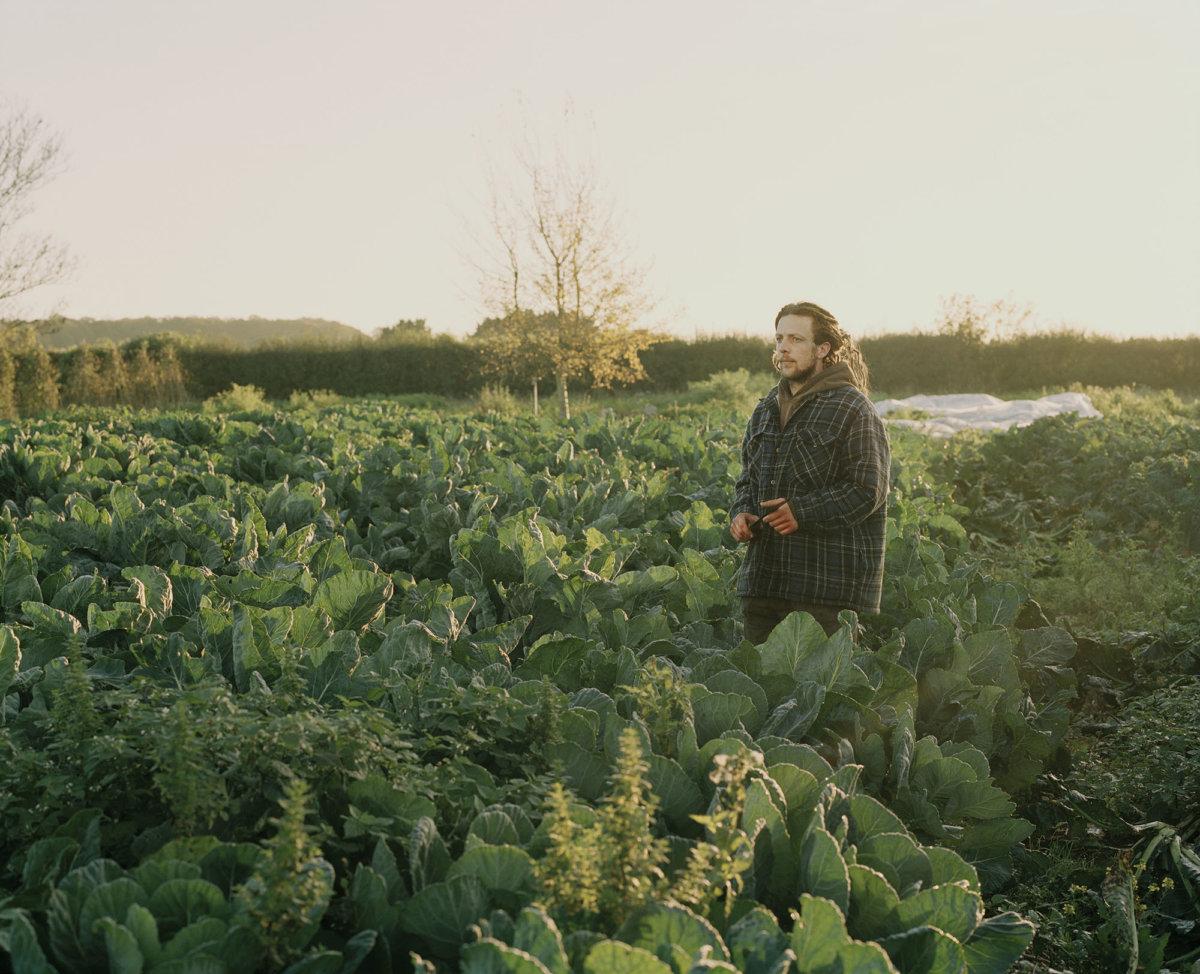 Glebe Farm – Kate Peters - CRXSS