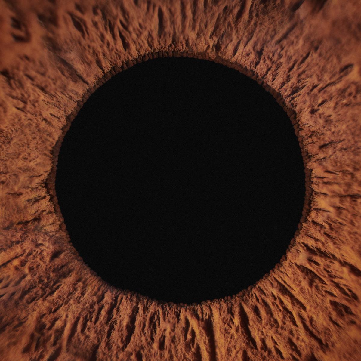 Pupils - CRXSS